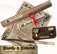 Personlised Wizard Wand and Display Stand £12.99